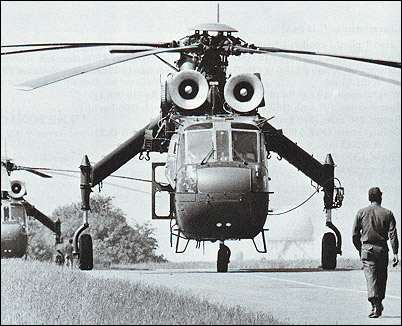 Resembling giant grasshoppers, U.S. Army CH-54A Tarhe helicopters sit on a runway at Finthen in West Germany. Both the S-60 and S-64 models are generally referred to as flying cranes despite the Army's official assignment of the Indian name Tarhe to the military CH-54s.
