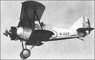 Gloster Gnatsnapper