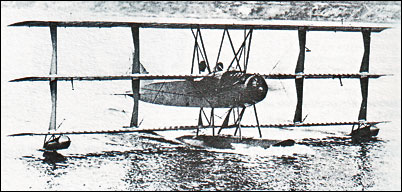 Curtiss Model L